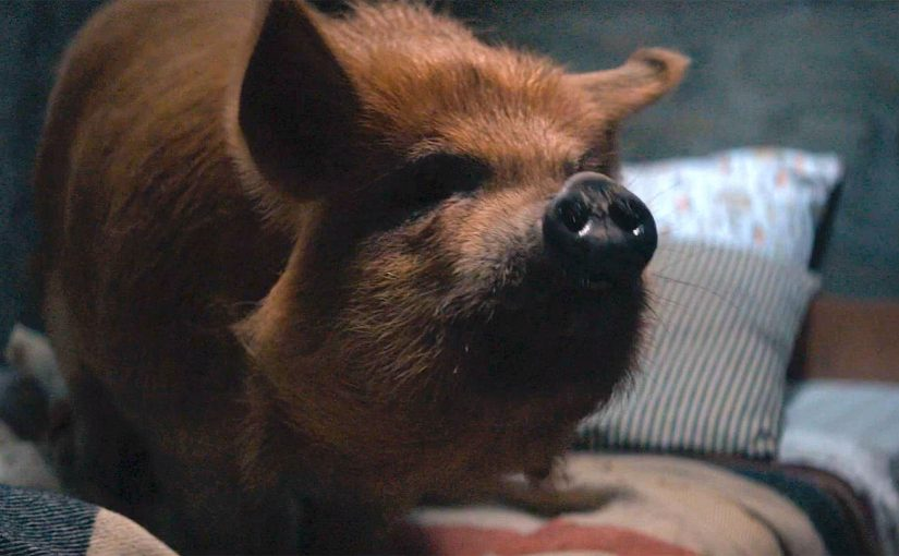 'PIG' REVIEW: COME BACK, TROTTER
